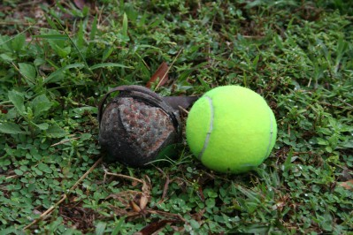 cluster-bomb_blu-26_tennis-ball-size-c-goffoz-handicap-international